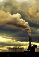 Environmental Pollution Causes Heart Disease
